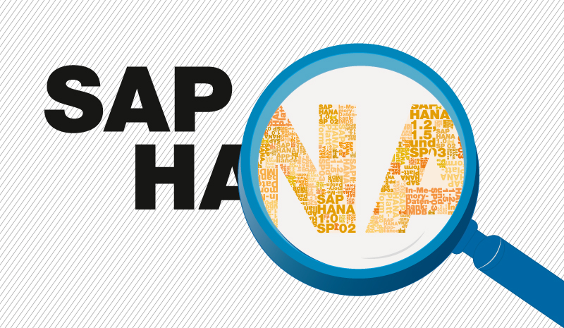 What is SAP In-Memory Computing aka HANA