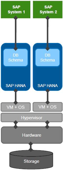 SAP HANA Virtualized Database Deployment
